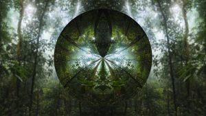 tree-1827317__480